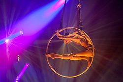 "© Licensed to London News Pictures. 27/11/2017. London, UK. Lea Hinz performs on the arial hoop.  Photocall for a preview of ""La Soirée"" at the Aldwych Theatre. Photo credit: Stephen Chung/LNP"