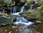 This cascade on the Roaring Fork tumbles a short distance below Grotto Falls, on the Tennessee side of Great Smoky Mountains National Park. From its source, Roaring Fork drops 2,500 feet (760 m) over just two miles (3 km). The source of Roaring Fork is located nearly 5,000 feet (1,500 m) up along the northern slopes of Mount Le Conte, where several small springs converge. The Roaring Fork valley is underlain by Precambrian Class II sandstone of the Ocoee Supergroup, a rock formation formed from ancient ocean sediments nearly a billion years ago, as in most of the Smokies.