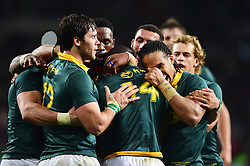 Cape Town-170821 Springbok players  celebrate Raymond Rhule try against Argentina played at the Nelson Mandela Bay Stadium in Port Elizabeth .pic Phando Jikelo/ANA pictures