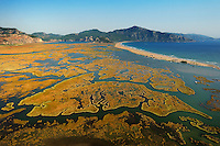 In the Dalyan Delta in Turkey the river artfully creates patterns of water and reed before reaching the beachfront to the open Mediterranean Sea. In the salt water and in the brackish water one can find loggerhead sea turtles (Caretta caretta) and Nile soft-shelled turtles (Trionyx triunguis), respectively, and both species nest in the sand of the long beach.
