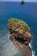 Huelo Island, home of rare Loulu Palms, North Shore, Molokai, Hawaii