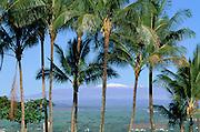 Mauna Kea, Hilo, Island of Hawaii, Hawaii, USA<br />