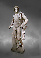 Roman statue of Apollo .Marble. Perge. 2nd century AD. Antalya Archaeology Museum; Turkey.  Against a grey background .<br /> <br /> If you prefer to buy from our ALAMY STOCK LIBRARY page at https://www.alamy.com/portfolio/paul-williams-funkystock/greco-roman-sculptures.html . Type -    Antalya     - into LOWER SEARCH WITHIN GALLERY box - Refine search by adding a subject, place, background colour, museum etc.<br /> <br /> Visit our ROMAN WORLD PHOTO COLLECTIONS for more photos to download or buy as wall art prints https://funkystock.photoshelter.com/gallery-collection/The-Romans-Art-Artefacts-Antiquities-Historic-Sites-Pictures-Images/C0000r2uLJJo9_s0