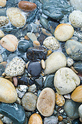 Seaweed and pebbles in pastel shades of colour forming curvy shapes on the seashore on Isle of Arran, Scotland