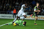 Swansea's Wilfried Bony is denied by Stoke keeper Asmir Begovic.  Barclays Premier league, Swansea city v Stoke city at the Liberty Stadium in Swansea, South Wales on Sunday 10th November 2013. pic by Andrew Orchard, Andrew Orchard sports photography,