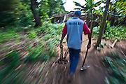 Esmeraldas_MG, 02 de Maio de 2010...Colheita de mandioca na comunidade rural de Laginhas em Esmeraldas, Minas Gerais...The cassava crop in the rural community in  Esmeraldas, Minas Gerais...Foto: JOAO MARCOS ROSA / NITRO