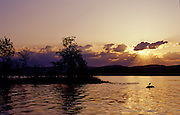 A lone gull rests on a rock in a lake at sunset - Quebec, Canada.