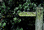 Kettlewell, Upper Wharfedale , wooden sign with hand-carved lettering, pointing to one of the local footpaths across the Dales.  Thick holly shrubbery behind.