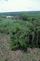Vista aérea de deforestación en la zona selvática del Amazonas, Venezuela.