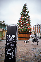 © Licensed to London News Pictures. 25/11/2020. London, UK. Sightseers look at Christmas trees in Covent Garden, London as the Chancellor, Rishi Sunak unveils the government's spending review with the government set to borrow £400 billion this year. The Spending Review will detail public sector pay, funding for the NHS and help for the unemployed which is expected to hit 2.6 million as the coronavirus pandemic continues to devastate the economy. Photo credit: Alex Lentati/LNP