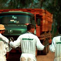 Para Region Amazon Rainforest, Brazil.Greenpeace activists block path of logging truck taking mahogany logs to swamill in The Amazon