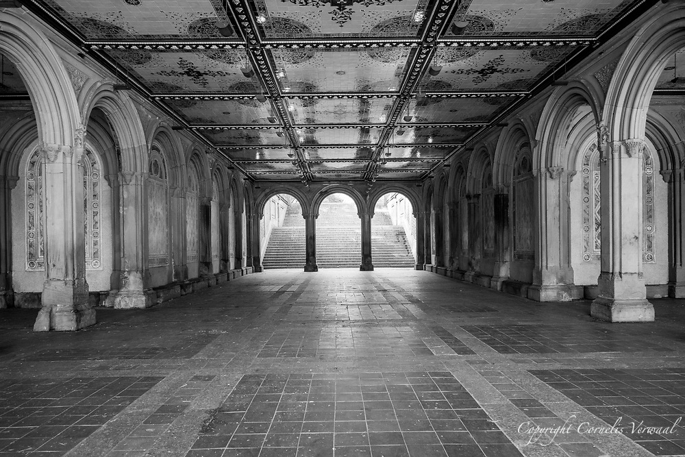 Bethesda Terrace Arcade, normally teeming with tourists, this morning 5/27/2020.