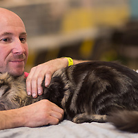 Owner pets a cat during the international cat show in Budapest, Hungary on Nov. 17, 2019. ATTILA VOLGYI