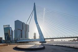 Erasmusbrug, Rotterdam, Zuid Holland, Netherlands