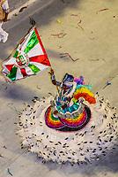 Flag bearer (porta bandeira) in the Carnaval parade of Grande Rio samba school in the Sambadrome, Rio de Janeiro, Brazil.