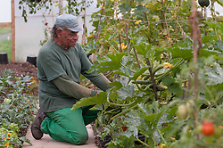 A prisoner working in a greenhouse