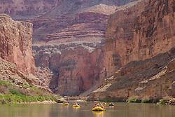 United States, Arizona, Grand Canyon National Park, whitewater rafting trip