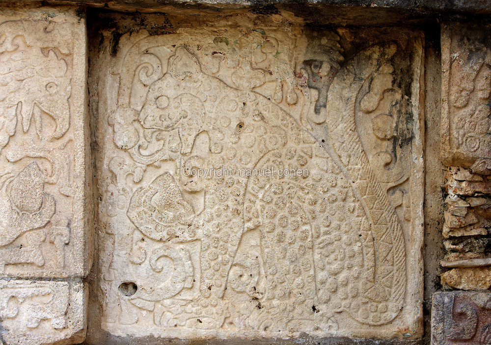 Symbolic struggle between th eagle (on the left) and the jaguar for the possession of the heart of the initiate, Temple of the Eagles and the Jaguars, Toltec architecture, 1100-1300 A.D., Chichen Itza, Yucatan, Mexico. Picture by Manuel Cohen