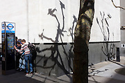 Visitors read instructions  for hiring rental bikes in central London, with shadows of bare branches on wall.