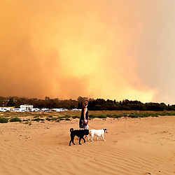 January 5, 2020, Paris, France: Batemans Bay New Years Eve bushfires in Australia on december 31, 2019. Witness commentary : It was upon us without warning; the night before I walked through the beach carnival and could see the fire in the mountains in the distance. I had a terrible feeling that everything might go to hell, and that the people screaming and laughing on the rides, and winning prizes in the sideshow alley, had no idea what was in store... I had a knock on my hotel door early morning that the fire front was rapidly approaching.I ran to the beach, and handed out the spare P2 masks I'd bought just the day before. People were terrified, huddled together, trying to take shelter on the beach. Then the bush on the beach caught fire, the sky was deepening red and black, and I ran back to my hotel room to take shelter from the heat. It was like being in the centre of hell. (Credit Image: © Abaca via ZUMA Press)