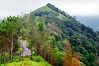 Java, East Java, Batu. Along the road from Batu to Kediri.