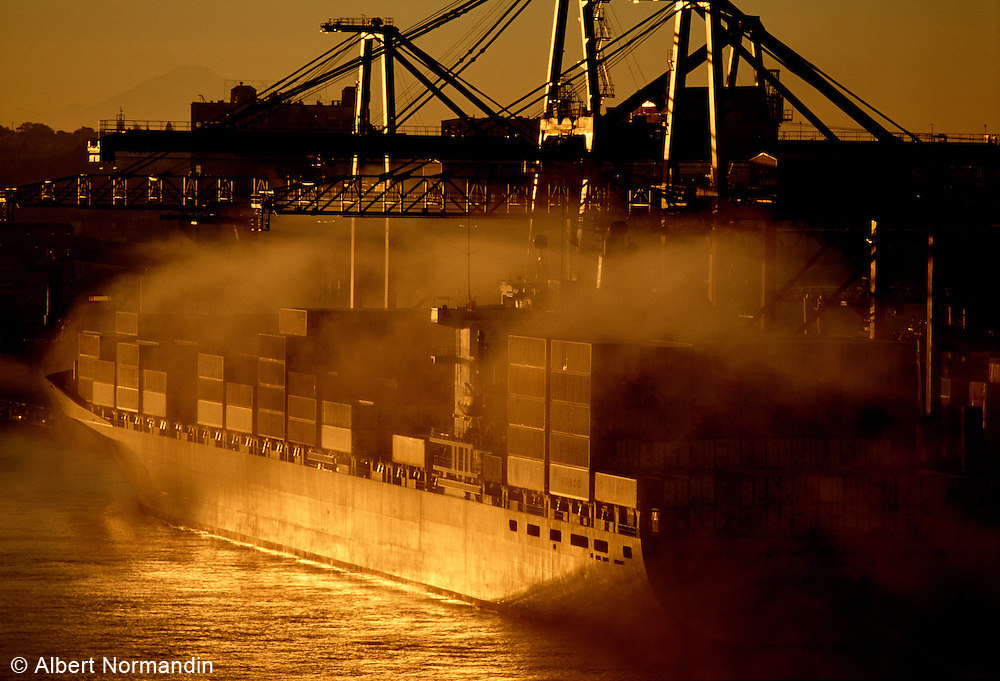 Container ship in early morning light and fog