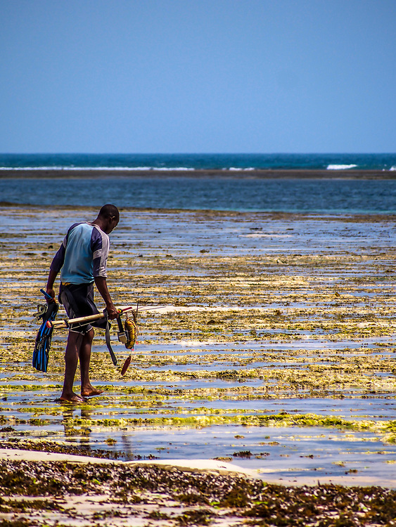 A spear fisherman at Tiwi beach, Kenya. Spearfishing is illegal in Kenya because it damages coral reefs when the spear is shot and misses its target and thus breaks pieces of coral.