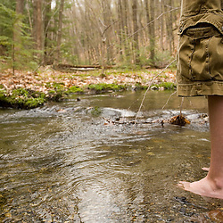 A boy plays in Gulf Brook in early Spring.  Pepperell, MA.