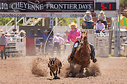 A professional rodeo cowboy ropes a steer during the steer roping event at the Cheyenne Frontier Days rodeo at Frontier Park Arena July 23, 2015 in Cheyenne, Wyoming. Frontier Days celebrates the cowboy traditions of the west with a rodeo, parade and fair.
