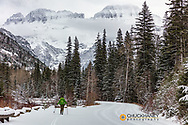 Cross Country skiing on Going to the Sun Road in Glacier National Park, Montana, USA MR