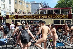 © Licensed to London News Pictures. 08/06/2013. London, United Kingdom. Environmental campaigners cycle naked through central London for annual World Naked Bike Ride event. credit : Rob Powell/LNP