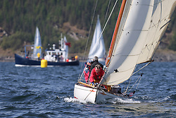 The Clyde Cruising Club's Scottish Series held on Loch Fyne by Tarbert. Day 2 racing in a perfect southerly<br /> <br /> 2143C, Mignon,  B Fisher,/B Dunning, CCC, Fife Day Boat 1898