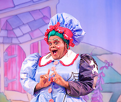 Mother Goose <br /> at the Hackney Empire, London, Great Britain <br /> press photocall<br /> 20th November 2014 <br /> <br /> Clive Rowe as Mother Goose <br /> <br /> <br />  <br /> <br /> <br /> Photograph by Elliott Franks <br /> Image licensed to Elliott Franks Photography Services