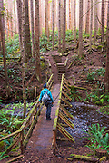 An angler hikes through the forest on a trail to the river. Vancouver Island, BC