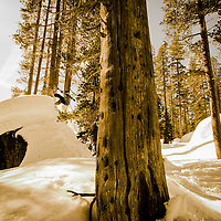 Jenny Jones, Area 241, Tahoe, USA.