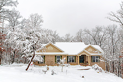 Another lovely winter home framed by a jungle of white branches