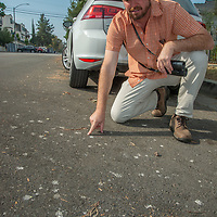 Biologist Dan Cooper studies Cooper's hawk droppings on the road below a nest - a clue to finding them.