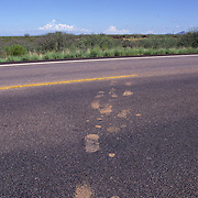 Muddy footprints across a highway show the path undocumented migrants took entering the country from Agua Prieta, Mexico into Douglas, Arizona. Please contact Todd Bigelow directly with your licensing requests. PLEASE CONTACT TODD BIGELOW DIRECTLY WITH YOUR LICENSING REQUEST. THANK YOU!