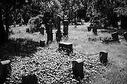 20140530, Berlin, Germany, Cemetery