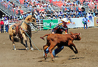 Josh Peek from Pueblo, Colorado has his eyes on the prize in the tie-down roping section of the 102nd California Rodeo Salinas, which opened July 19 for a four-day run.