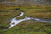 A small stream in the grass in the valley below the base of Mount Clements at Logan Pass, Glacier National Park, Montana, Tuesday, October 7, 2014. According to Dan Fagre Ph.D. of the USGS receding glaciers in the park means that streams dry up in late summer and fall and that without the water available from melting ice in the late summer a lot of grasses will dry up and be less nutritious.