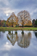 A Quiet Pond And Trees In Late Afternoon Light During Autumn, Southwestern Ohio
