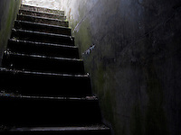 A concrete stairway climbs up to light at the top at the late 19th century battlement at Fort Casey on Whidbey Island, Washington, USA