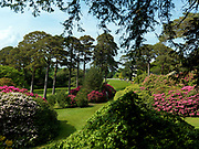 The gardens at Muckross House featuring the rhodendrons.<br /> Photo: Don MacMonagle <br /> e: info@macmonagle.com