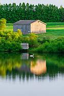 Three Ponds Farm, Bridgehampton, NY