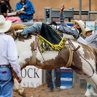 Bareback rider Kyle Charley makes a 73-point ride during the Gallup Intertribal Indian Ceremonial Rodeo at Red Rock Park in Gallup Friday.