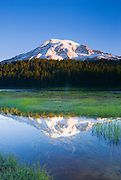 Dawn light on Mount Rainier from Reflection Lake, Mount Rainier National Park, Washington