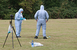 ©Licensed to London News Pictures25/07/2020     <br /> Chislehurst, UK. Forensics removing the police tent and checking the blood soaked ground for evidence. A male pedestrian has been involved in a collision with a van in Chislehurst, South East London, The van did not stop. The London air ambulance was called but the man sadly died at the scene a police cordon is in place and at this time it is believed the police are linking this incident to the double stabbing at the Gordon Arms pub in Chislehurst. Photo credit: Grant Falvey/LNP