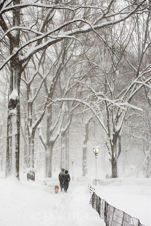 Couple walking with their dog during a blizzard in Central Park, New York City