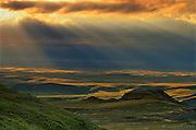 Killdeer Badlands amongst grasslands (East Block)<br /> Grasslands National Park<br /> Saskatchewan<br /> Canada